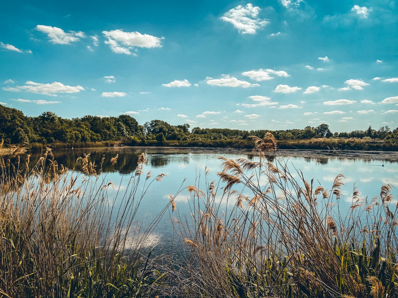 Ju on the road : Escapade en Hesbaye : la Réserve naturelle du Haut-Geer